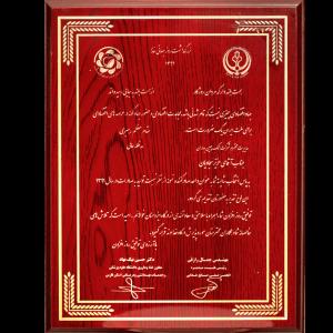Honors-TakchinBaharan2-1024x928-1.png
